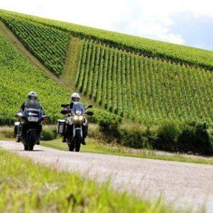 Motorrijders-toeren-door-de-wijngaarden