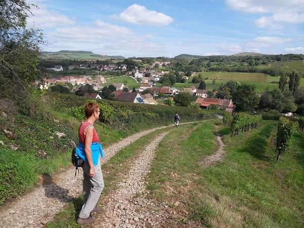 Auberge Le Grillon wandelarrangement door de wijngaarden